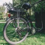 Electric cargo bike - Low box