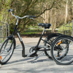Adult Tricycle Amcargobikes